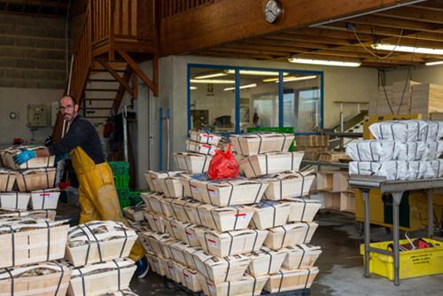 Boutique Jean de Cancale Vente d'huitres en ligne et sur place